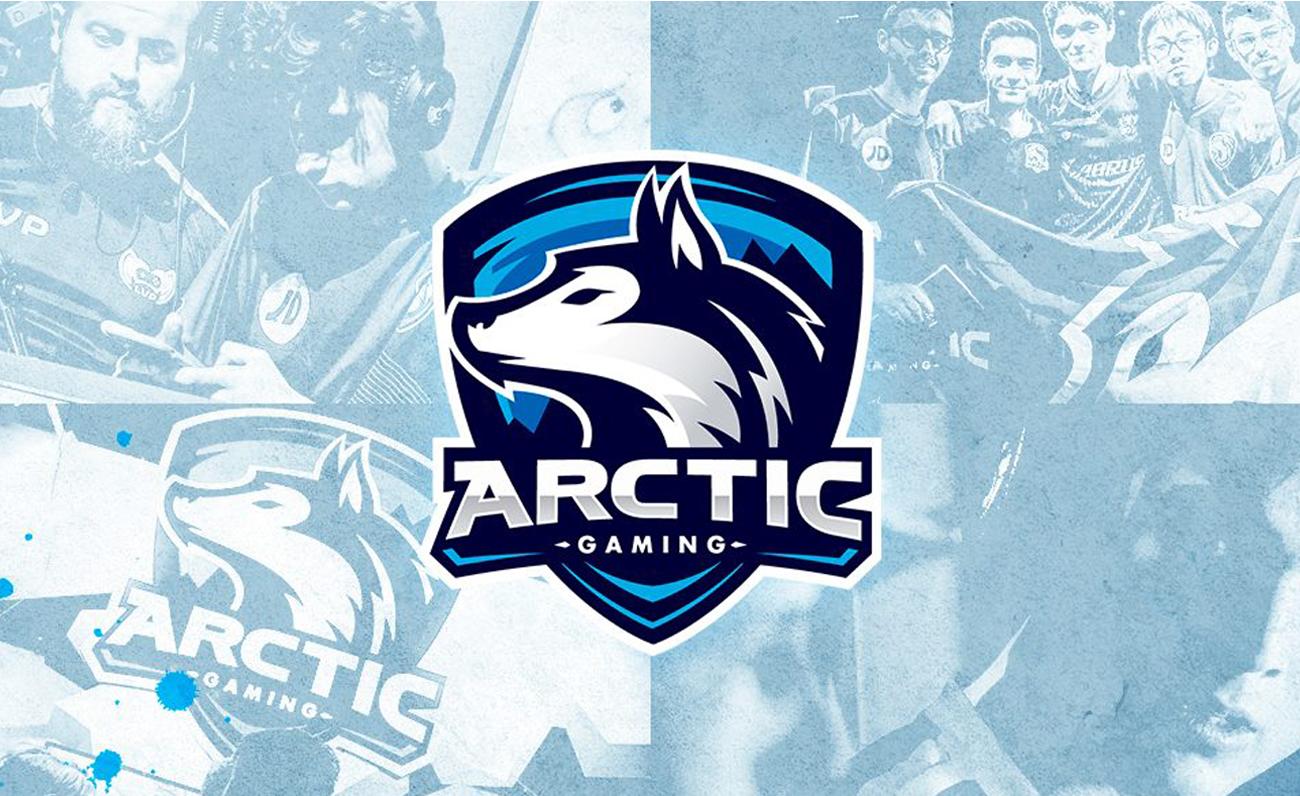 Arctic Gaming
