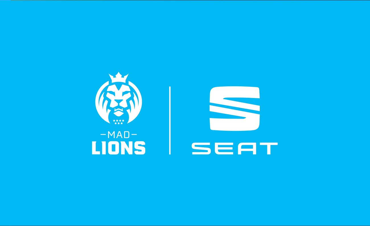 SEAT MAD Lions